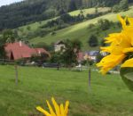ferienhof-echle-12